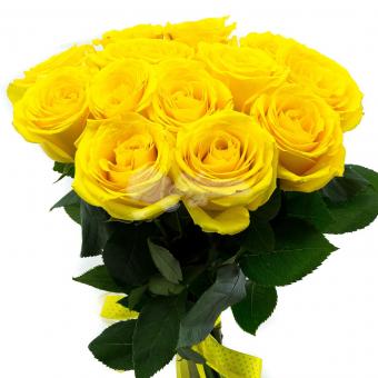 Букет из 13 Эквадорских желтых роз