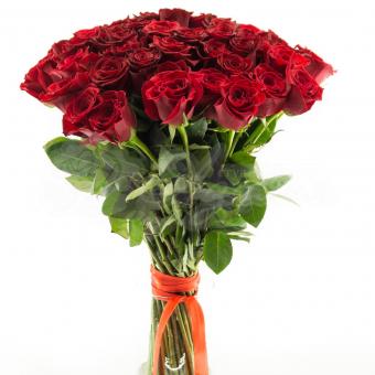 Букет из 51 Эквадорской розы