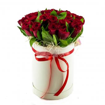 Коробочка из 25 Эквадорских роз